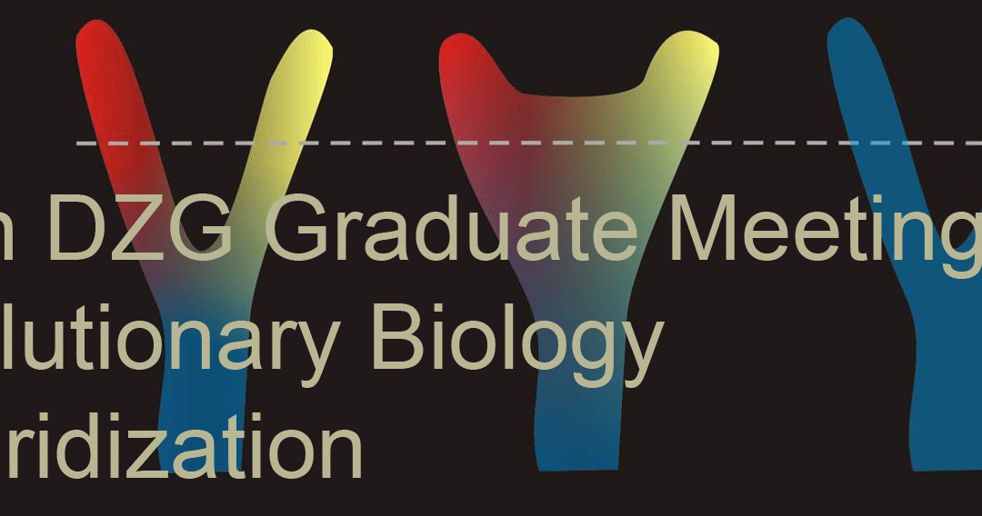 Extended Deadline – Graduate Meeting 2019 in Hamburg